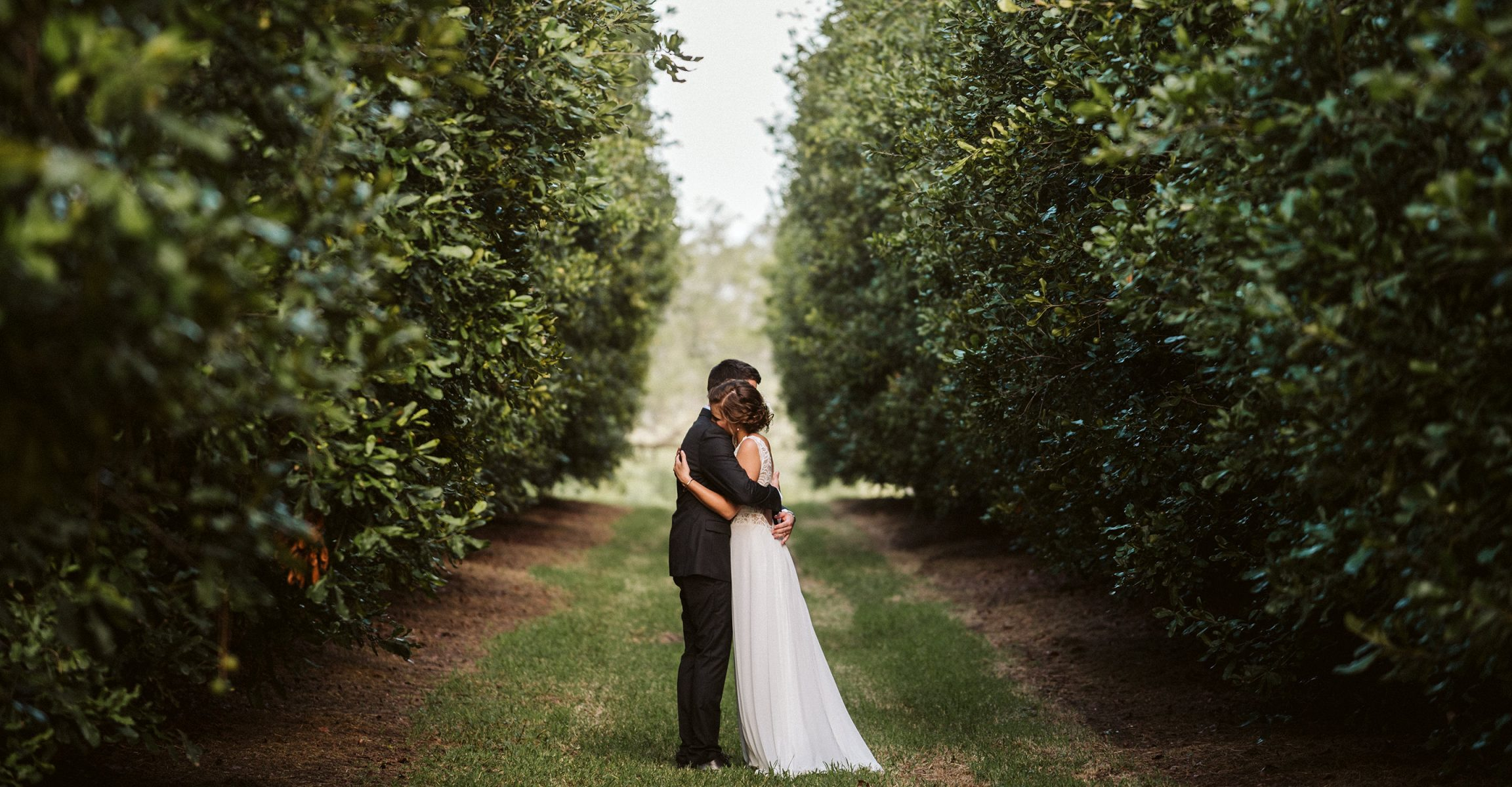 Bride and Groom hugging in Macadamia Orchard