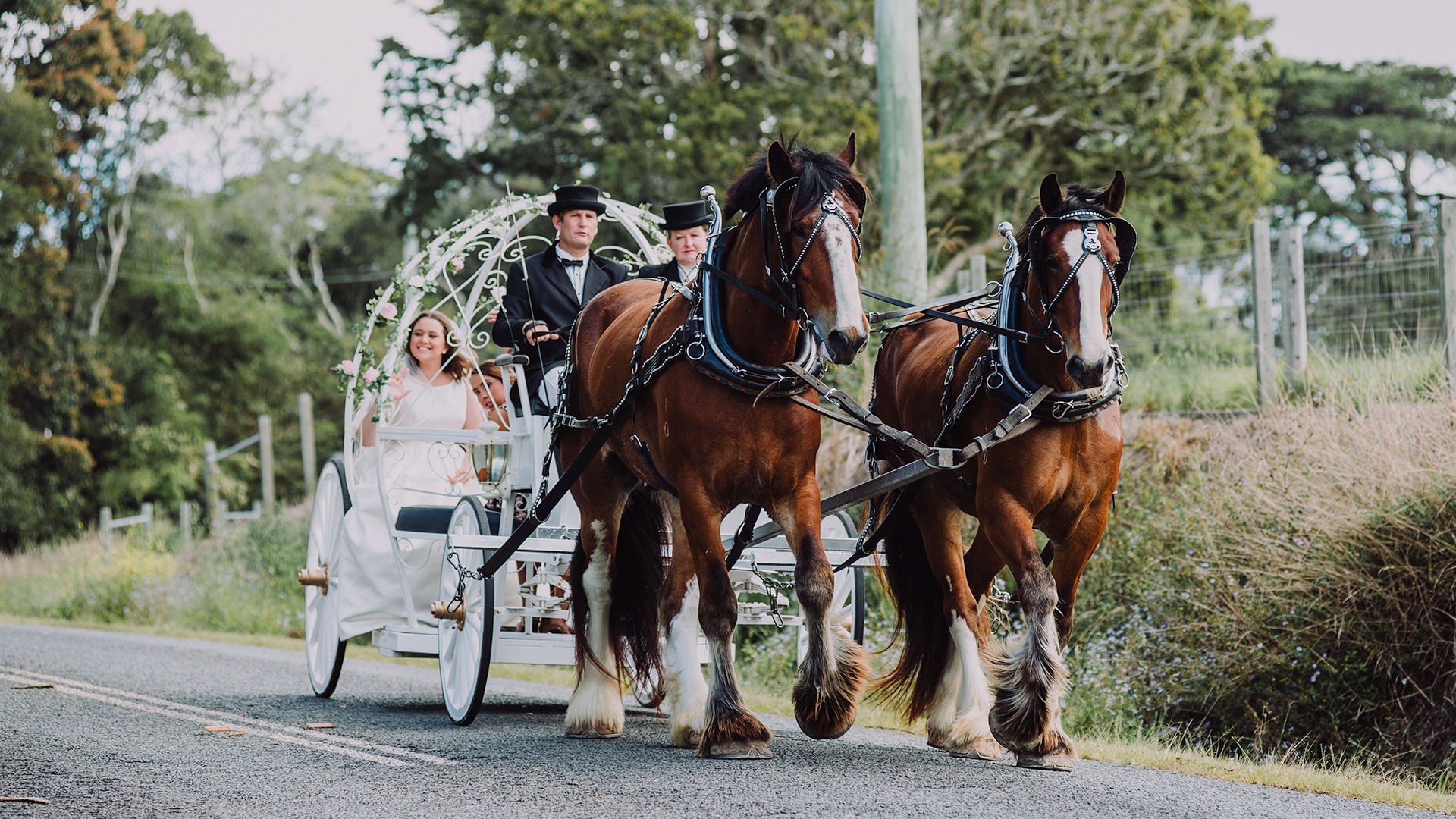 horse+carriage+bride
