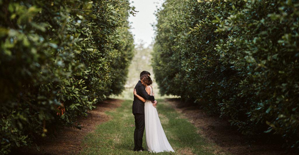 Summer Wedding in a Macadamia Orchard