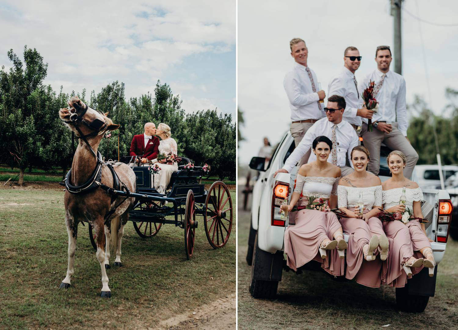 Wedding Party in horse and buggy