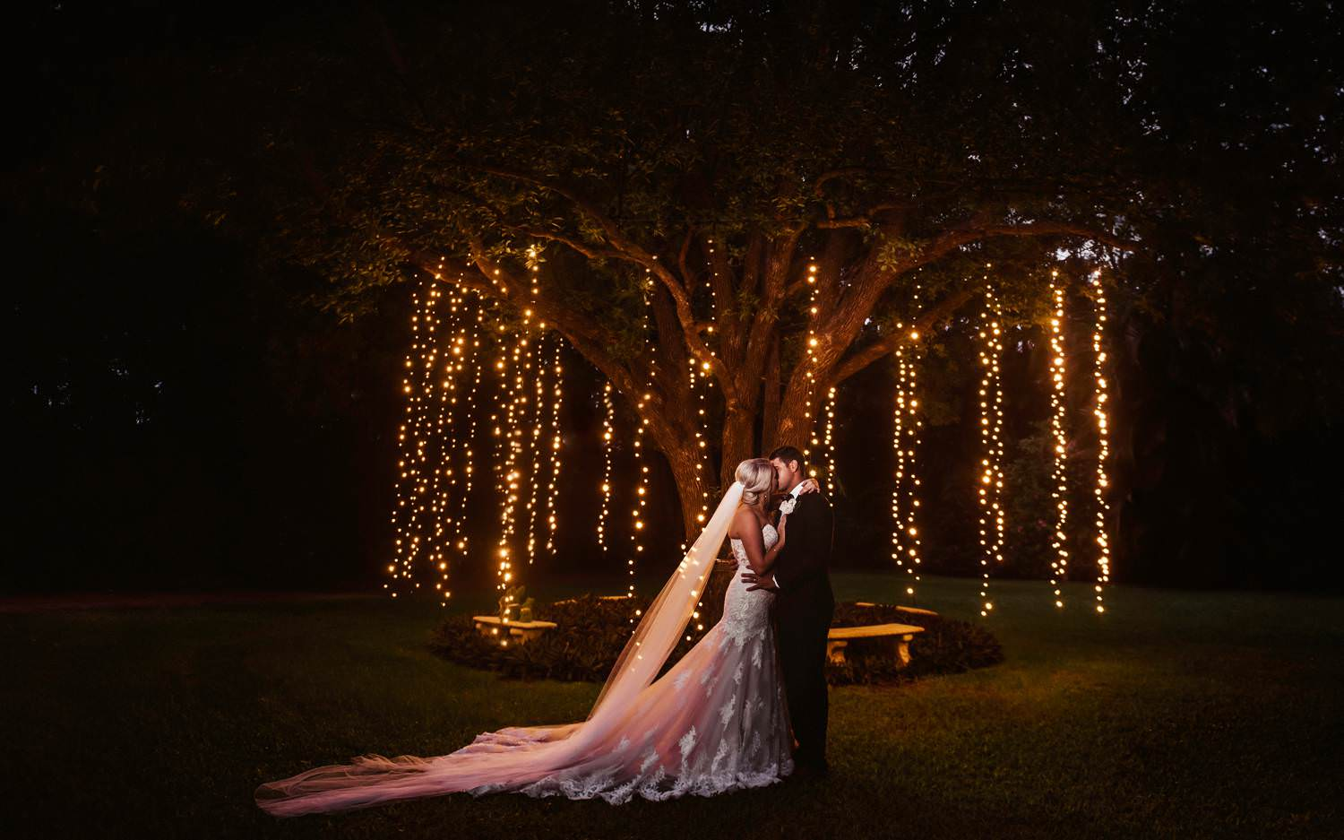 Bride and Groom kissing under a tree with fairy lights