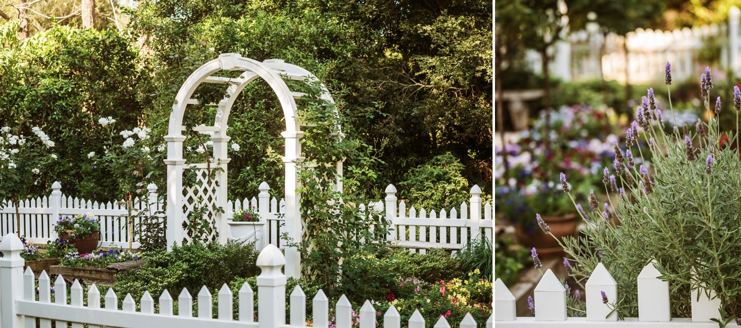 In the Grove rose garden with white arbor and picket fence
