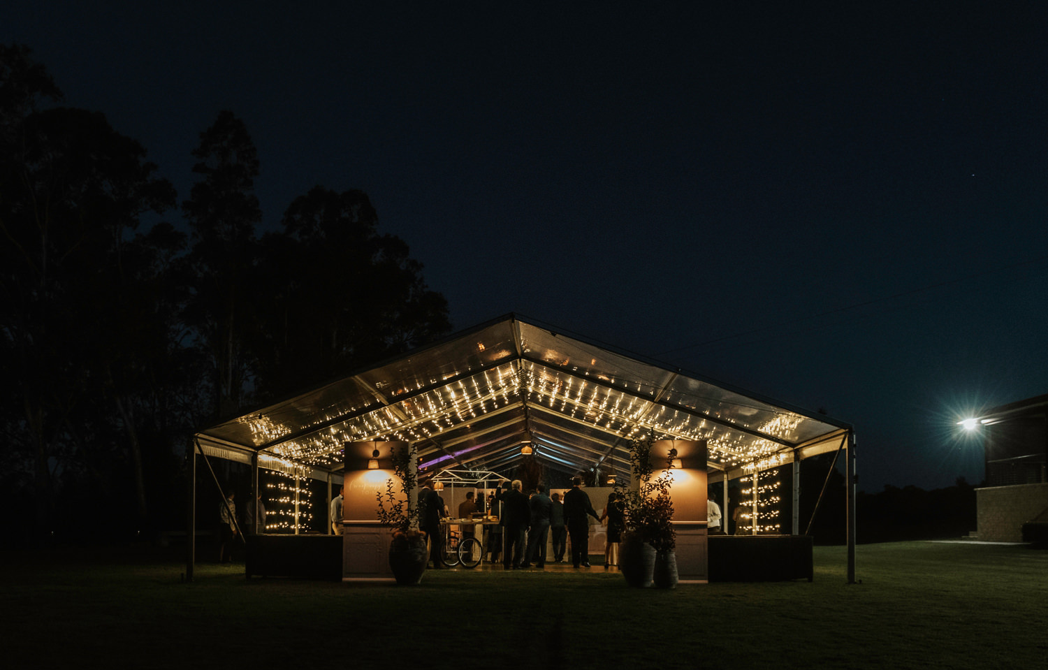 Night wedding Reception Platypus Park